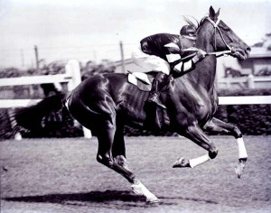 Phar Lap, great racehorse